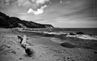 Пейзажик с морским берегом, бревном и облаками