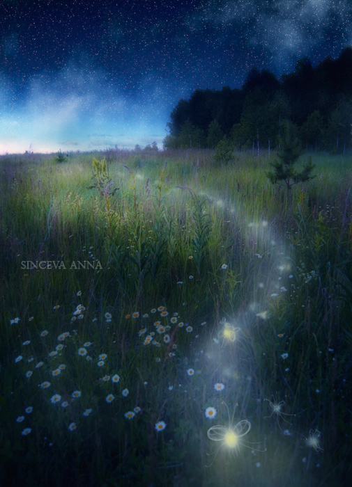Те, кто ночью освещают небо..