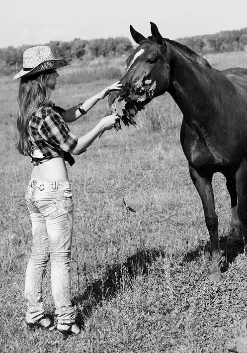 Беседа с конем
