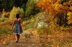 Дорога в осень