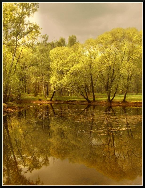 - Старый пруд.. -