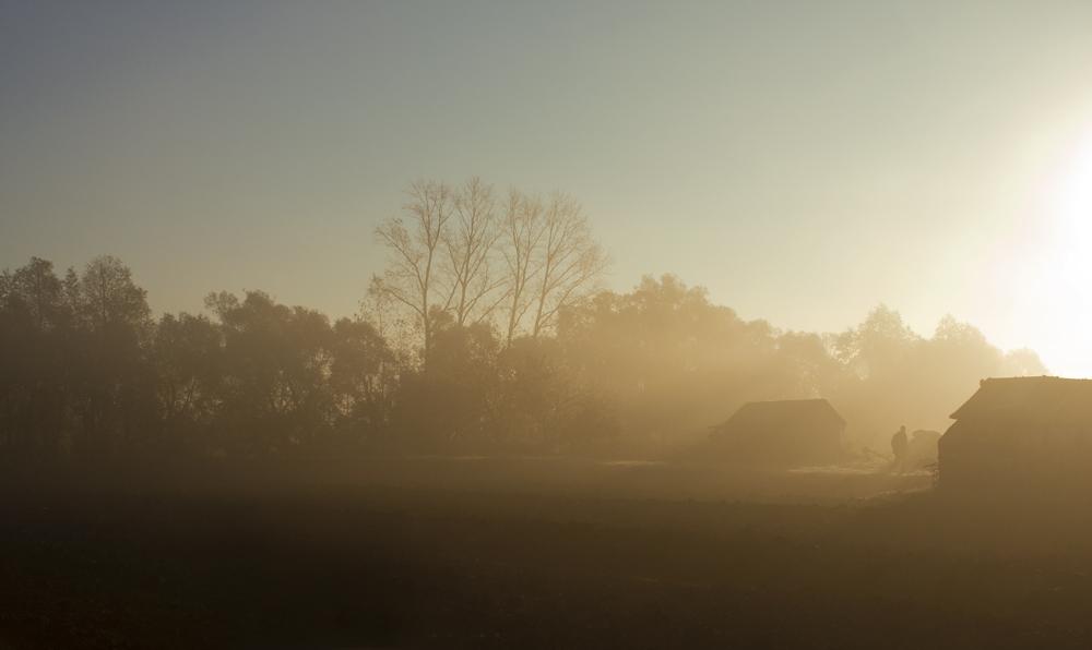 morning. fog...