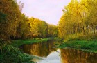 Течет река Клязьма